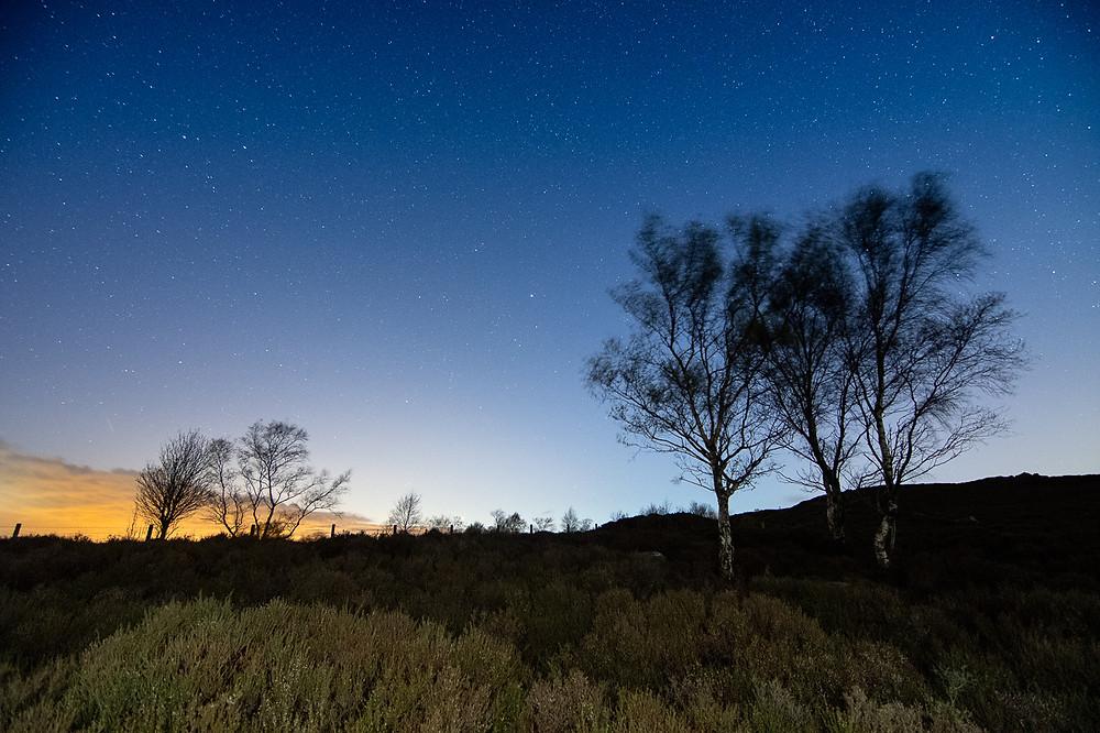 Nikon D500, astrophotography, astro landscape photography, nightscape