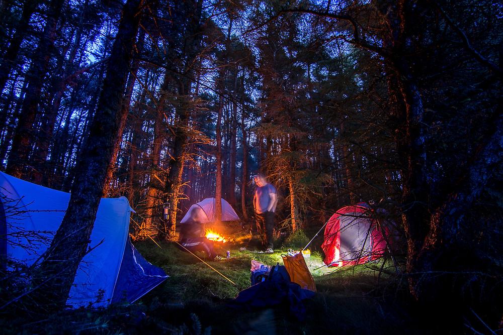 Guisborough woods campsite