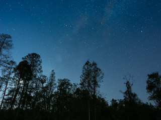 Landscape photography at night and astrophotography in rural Florida
