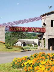 Report | City of Flores da Cunha