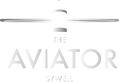Avaitor Final logo .png