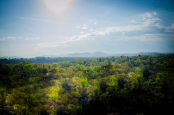 Asheville Ridge