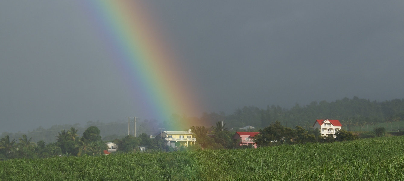 Rainbow_over_the_house_in_the_sugar_cane_fields.jpg