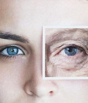 Aging Research Program.jpg