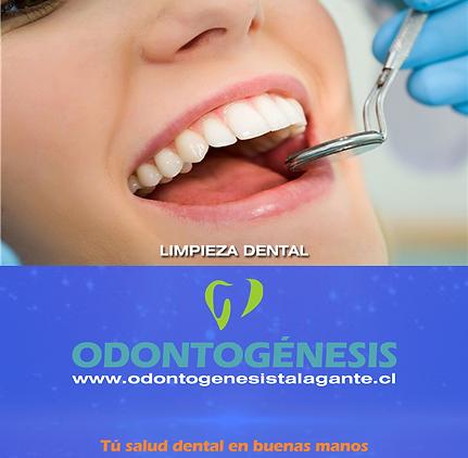 dentista-en-talagante-web-120.png