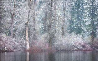Frame Of Winter