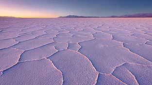 Salt Of The Earth II