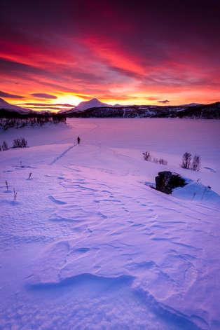 Artic Eplorer
