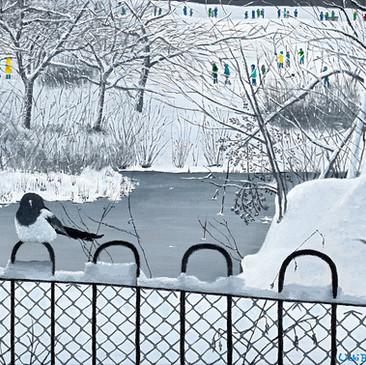 Winter Stillness in Kelvingrove