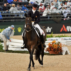Trening av hest fra bakken med Camilla Kalseth