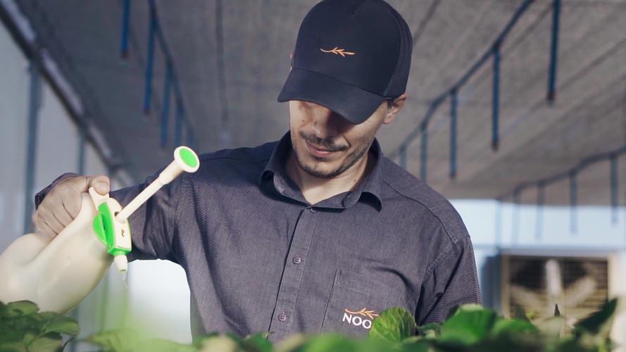 Nooa Ciência e Tecnologia Agrícola