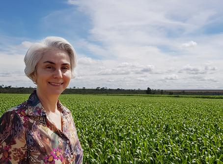 Agricultura irrigada: uma conversa sobre o atual cenário e seus desafios.