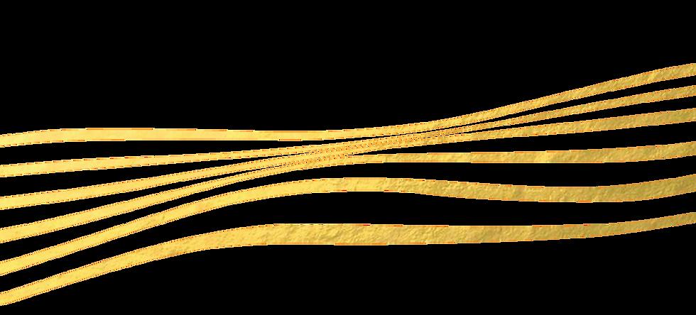 linhas-01.png