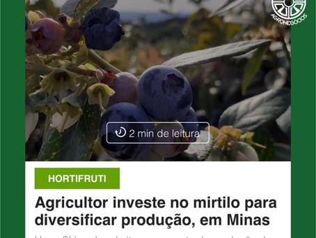Shimada Agronegócios no site do Globo Rural.