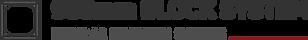 900블럭 로고(블랙).png