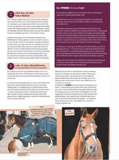 Horse 11 2020 w gazecie opinie  studio-z
