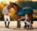 BEMER Horse 2020 telefon 576013160