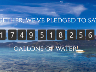 Sustainability Water Pledge
