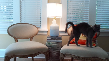 Geode Bottle Lamp DIY