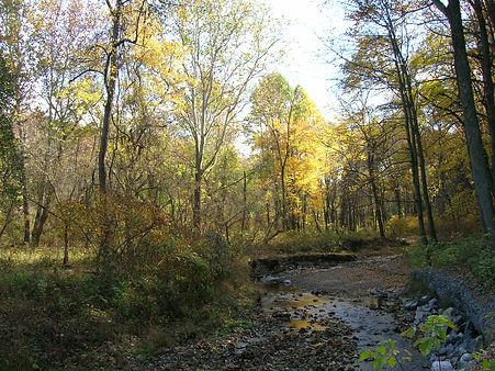 Walking trail in fall.JPG