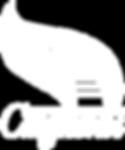 Логотип Ступени.png