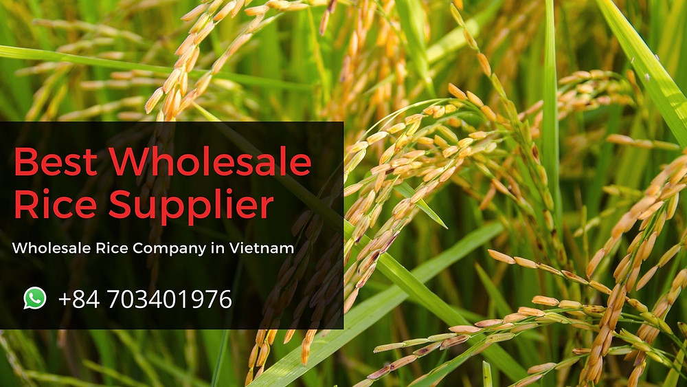 Best Wholesale Rice Supplier