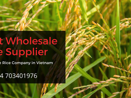 Best Wholesale Rice Supplier - Wholesale Rice Company in Vietnam