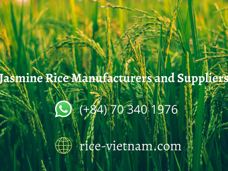 Jasmine Rice Manufacturers | Jasmine Rice Supplier
