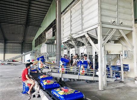 Exporter Of Rice From Vietnam