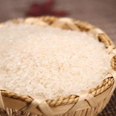 Brown rice from Vietnam