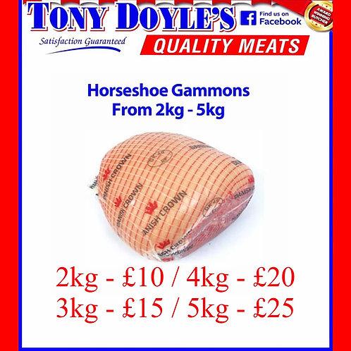 Horseshoe Gammons