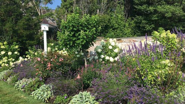 Beach Pollinator Garden