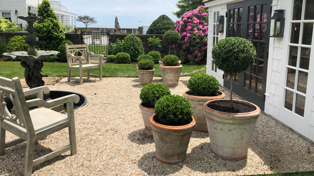 Boxwood Containers