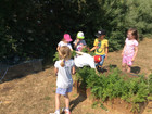 Allotment Club - Party Time!