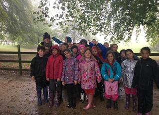 Y4 Visit to Hooke Court