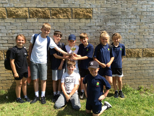 Conifers Win Y5/6 Rounders Tournament