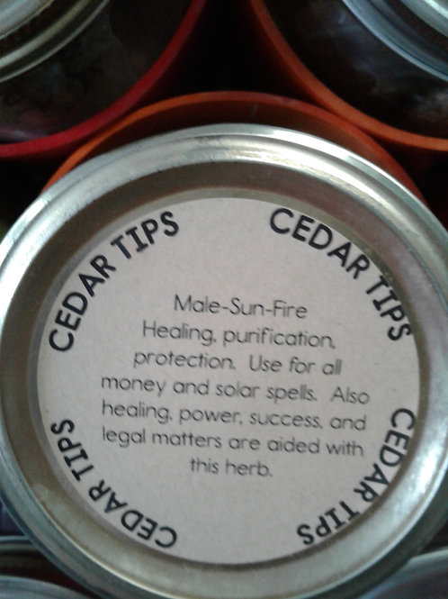 Cedar Tips