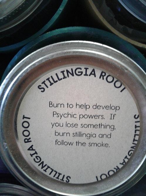Stillingia Root
