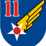 11th Air Force Leather Patch
