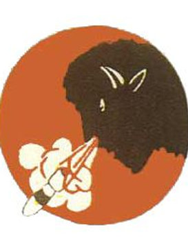 332nd Bomb Squadron Leather Patch