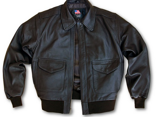 Modern Leather A-2 US Wings