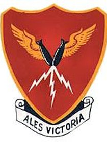 385th Bomb Group Leather Patch