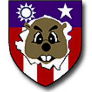 492nd Bomb Squadron Leather Patch