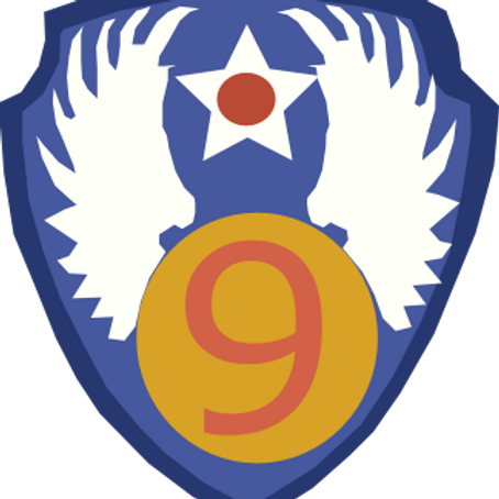 9th Air Force Leather Patch