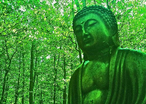green_buddha_web.jpg