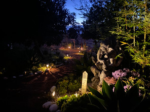 The Sanctuary at night