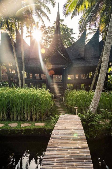 Bali-blackbamboo.jpg