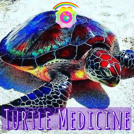 A little tale about Turtle Medicine