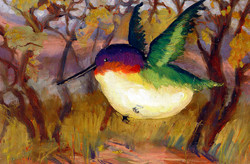 """""""Tijeras Bird"""""""