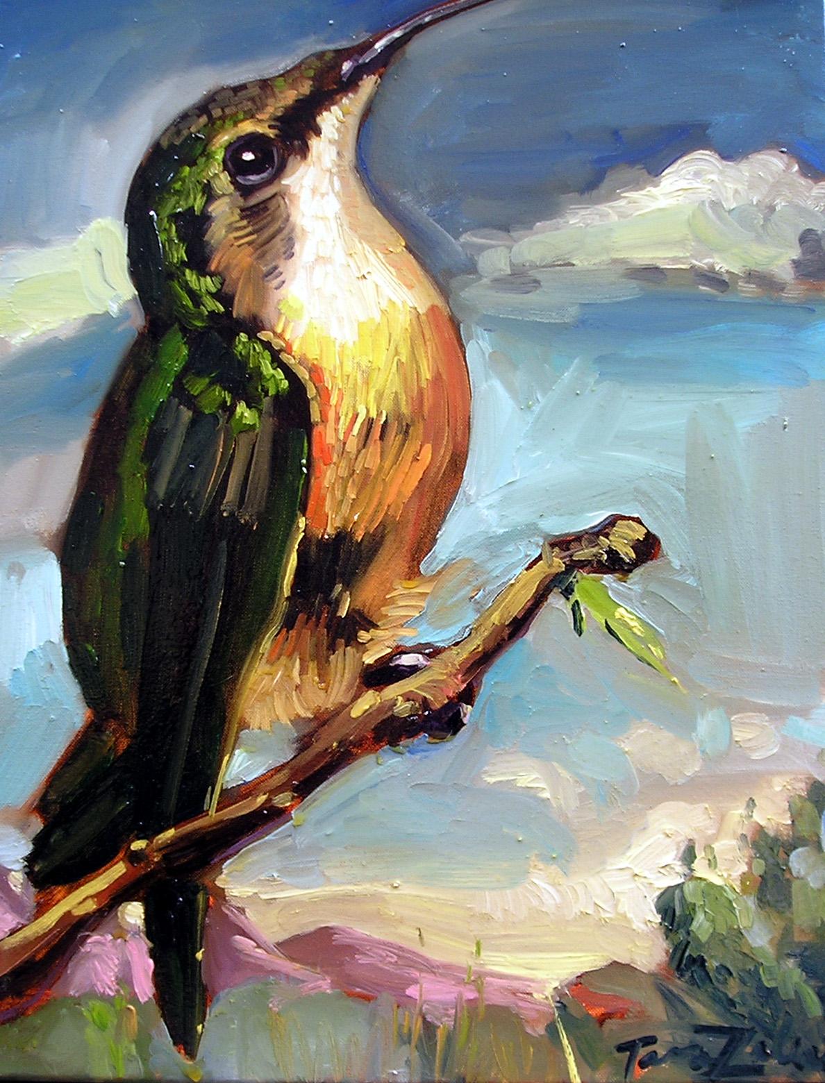 """""""Coronado Hummingbird"""""""